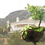 schwebender Garten 6